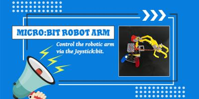 Build A micro:bit Robot Arm with Bricks